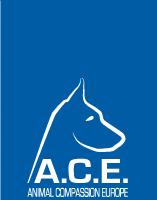 Vermittlung über Partner ACE