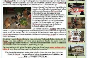 Hilferuf vom Gnadenhof Guttenburg