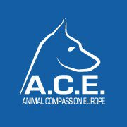 A.C.E – Tiere in Not